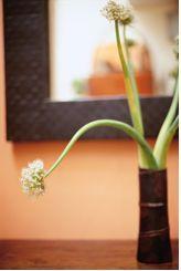 Apartmenthaus Blume